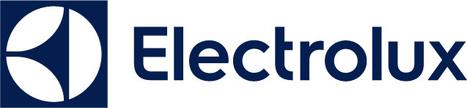 Electrolux dévoile sa nouvelle identité visuelle | Visual Strategy | Scoop.it