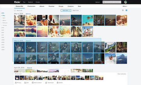 You Can Now Bulk Download from Flickr: Your Photos Really Do Belong to You | xposing world of Photography & Design | Scoop.it