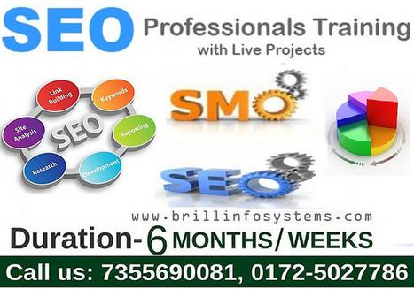 SEO Training in Chandigarh | Brill Infosystems | Scoop.it