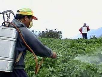 Pesticide Use Increases as GMO Technology Backfires « Set You ... | Science & Technology News | Scoop.it