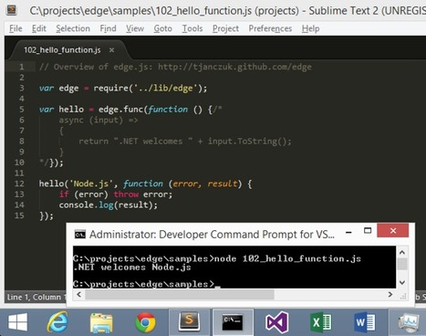 On the Edge of the CLR - use .Net in Node.js | JavaScript for Line of Business Applications | Scoop.it