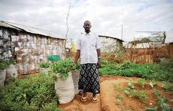AFRICA: The Constant Gardeners - Climate Change and desertification | CLIMATE CHANGE WILL IMPACT US ALL | Scoop.it