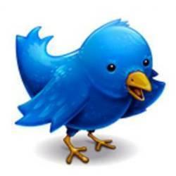Twitter : vers les 500 millions d'inscrits - Génération NT | Pratique et Twitter | Scoop.it