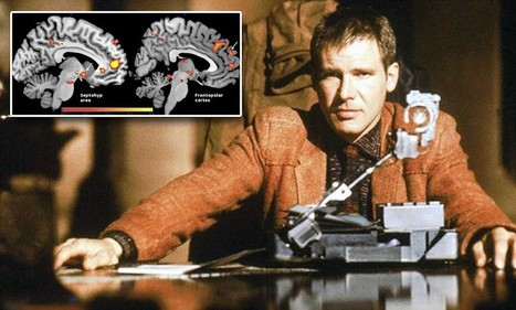 Can you train your brain to be KIND? Blade Runner-style 'empathy workout ... - Daily Mail | Technologies for Social Good | Scoop.it