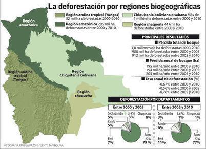 En una década deforestación arrasó 1,8 MM de hectáreas en Bolivia | Canal Azul 24 | Sudamericana | Scoop.it