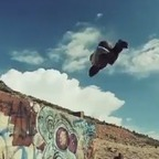 The flipping dead: Zombies do parkour - Holy Kaw! | Street Urban Sports & Arts Entertainment | Scoop.it