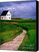 Cottage Among the Dunes Photograph by Edward Fielding - Cottage Among the Dunes Fine Art Prints and Posters for Sale | The Quotable Westie | Scoop.it