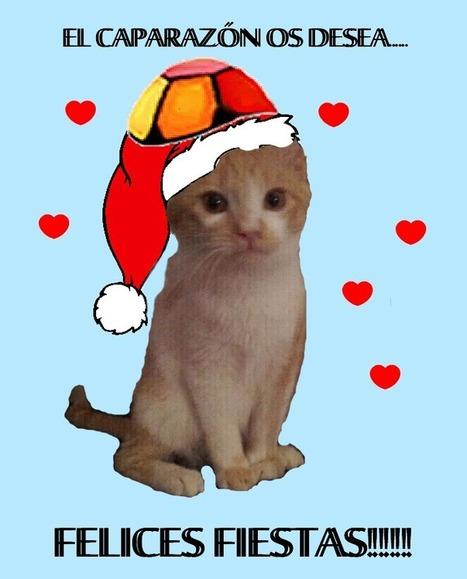 10 de los mejores posts de 2012, un vídeo y Feliz Navidad | Educación Matemática | Scoop.it