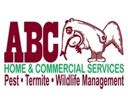 Marietta Pest Control by ABC Home & Commercial Services Marietta | Pest Control Marietta | Scoop.it