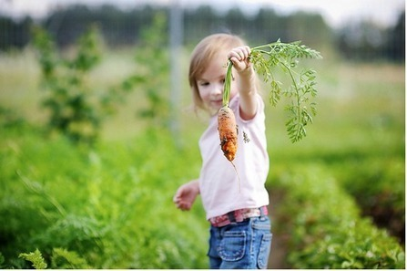 Kids Eat More Vegetables After Nutrition Lessons | Show Me Your Roots | Scoop.it