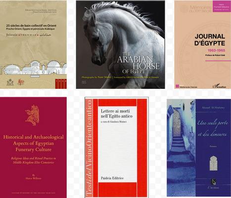 Quelques suggestions de lecture : ouvrages récents sur l'Égypte et l'égyptologie | Égypt-actus | Scoop.it
