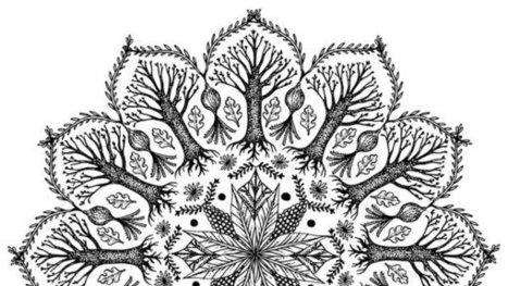 The Shifting Mandala | Erba Volant - Applied Plant Science | Scoop.it