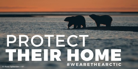 Greenpeace - Protect the Arctic National Wildlife Refuge! | Our Evolving Earth | Scoop.it