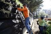 A nuisance recycled into community garden - San Francisco Chronicle | Urban Gardening | Scoop.it