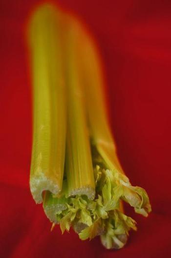 "Celery and artichoke flavonoids kill pancreatic cancer cells | Buffy Hamilton's Unquiet Commonplace ""Book"" | Scoop.it"