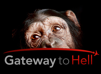 Gateway to Hell | Global campaign to end lab animal transport | Nature Animals humankind | Scoop.it