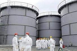 Japan PM seeks overseas help on Fukushima nuclear plant   Environment.   Scoop.it