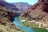 Dams destabilize river food webs: Lessons from the Grand Canyon | Sustain Our Earth | Scoop.it