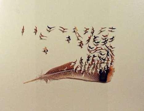 Feather Art by Chris Maynard #art #feathers #nature #birds | Visual Art - 21st century sculpture | Scoop.it