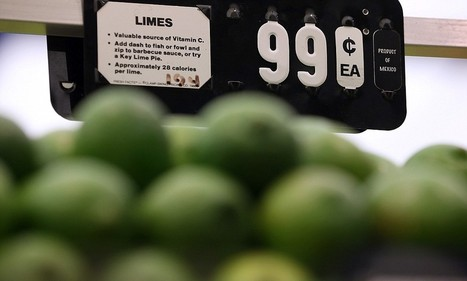 Bad weather, disease and cartel violence causing a lime shortage | Citrus science | Scoop.it
