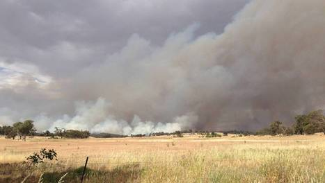 RFS battling Springdale fire - Daily Advertiser   How to be a firefighter   Scoop.it