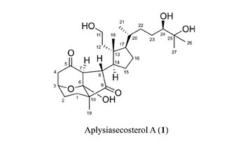 Aplysiasecosterol A: A 9,11-Secosteroid with an Unprecedented Tricyclic γ-Diketone Structure from the Sea Hare Aplysia kurodai   LGN   Scoop.it