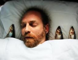 Sleeping brains can process and respond to words - health - 11 September 2014 - New Scientist | Social Neuroscience Advances | Scoop.it