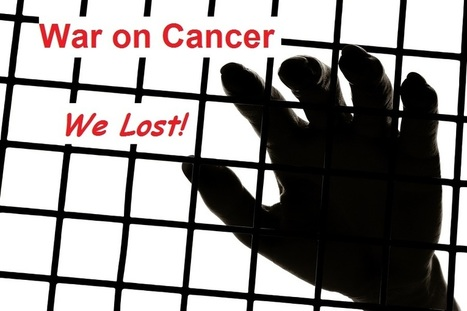 The Cancer Industry is Too Prosperous to Allow a Cure | 3.3 - Health Practises in NZ (Cancer Treatments) | Scoop.it