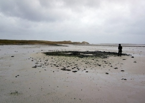 Archaeologists find Bronze Age settlement on Orkney | My Scotland | Scoop.it