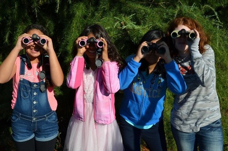 Amazon Binocular Project | Rainforest CLASSROOM: Inspiration, Resources,and More | Scoop.it