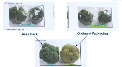 Japanese Super Cellophane Keeps Fruit Fresh for Months | Five Regions of the Future | Scoop.it