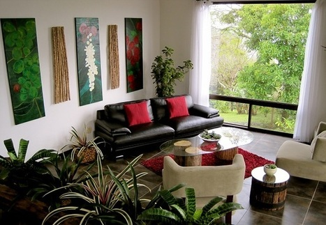 Top 10 Beautiful Plants For Your Drawing Room - TopYaps | Art & Culture | Scoop.it