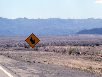 On all journeys pay attention to road signs... | Baja California | Scoop.it