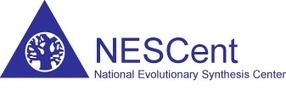 Evolution of insect sociality: an integrative modeling approach (NESCent: The National Evolutionary Synthesis Center) | Social Foraging | Scoop.it