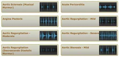 Auscultation. Heart and Lung Sounds Training and Reference Guides   New Group 12   Scoop.it