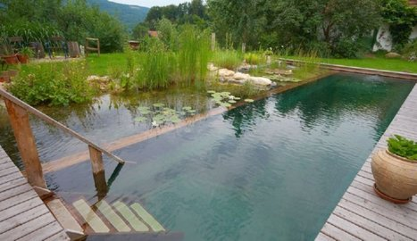 Natural Pools or Swimming Ponds | Small Houses and Sustainable Architecture | Scoop.it