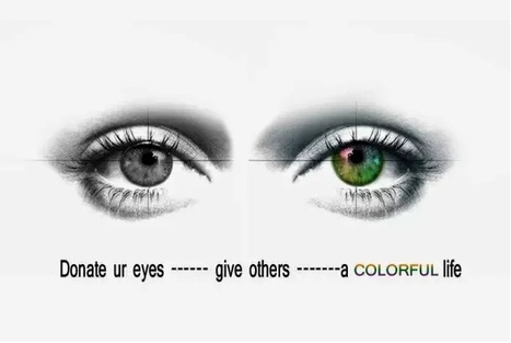 Donate your eyes to help brighten the life of visually impaired   Eye Care   Scoop.it