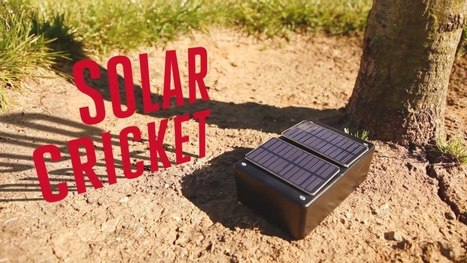 Solar Panels + Arduino + Piezo = Solar-Powered After-Sunset Cricket | Arduino Focus | Scoop.it