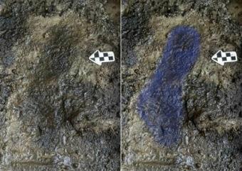 Huellas humanas de 13000 años de antigüedad en una isla norteamericana | Pangea | Centro de Estudios Artísticos Elba | Scoop.it
