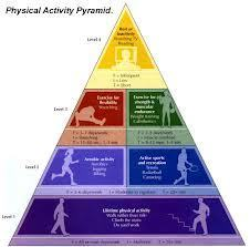 Students Take Physical Education Online | iPad and PE | Scoop.it