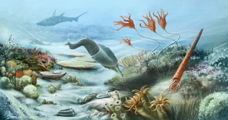 Silurian Period Facts: Climate, Animals & Plants - LiveScience.com | prehistoric plants | Scoop.it