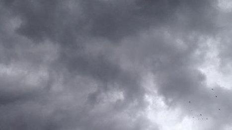 #WARNING Major storm damage reported in N. Mississippi including DeSoto Cty