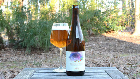 Haw River Beneath the Feet of Orion Review | Saxapahaw | Scoop.it