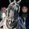 American Denomination Project: Amish