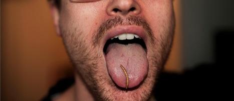 Le Goût Du Futur : On a Mangé Des Insectes   Chick' n Touch - Le blog   Scoop.it