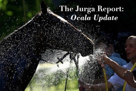 HITS Ocala: Show Goes On, and So Does EHV Quarantine; Vet Seminar Tuesday -- The Jurga Report | The Jurga Report: Horse Health, Welfare, and Care | Scoop.it