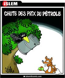 Mise en place du tri des déchets avant la fin juin à Oran (responsable) - Le temps d'Algérie   Groupe CHIALI   Scoop.it