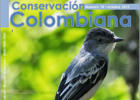 Colombia la nación con mayor diversidad de aves del Mundo, más de 1.900 especies | ::. Proaves .:: | Proaves | Agua | Scoop.it