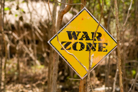 Does your company culture resemble jungle warfare? | Karma at Business | Scoop.it