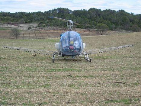Des hélicoptères survoleront, peut-être, les vignes cette année | Le vin quotidien | Scoop.it